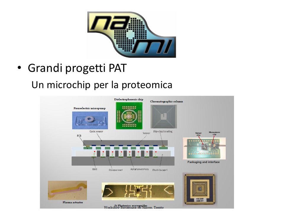 Grandi progetti PAT Un microchip per la proteomica