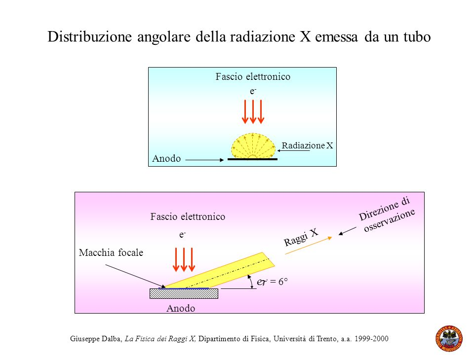 Distribuzione angolare della radiazione X emessa da un tubo