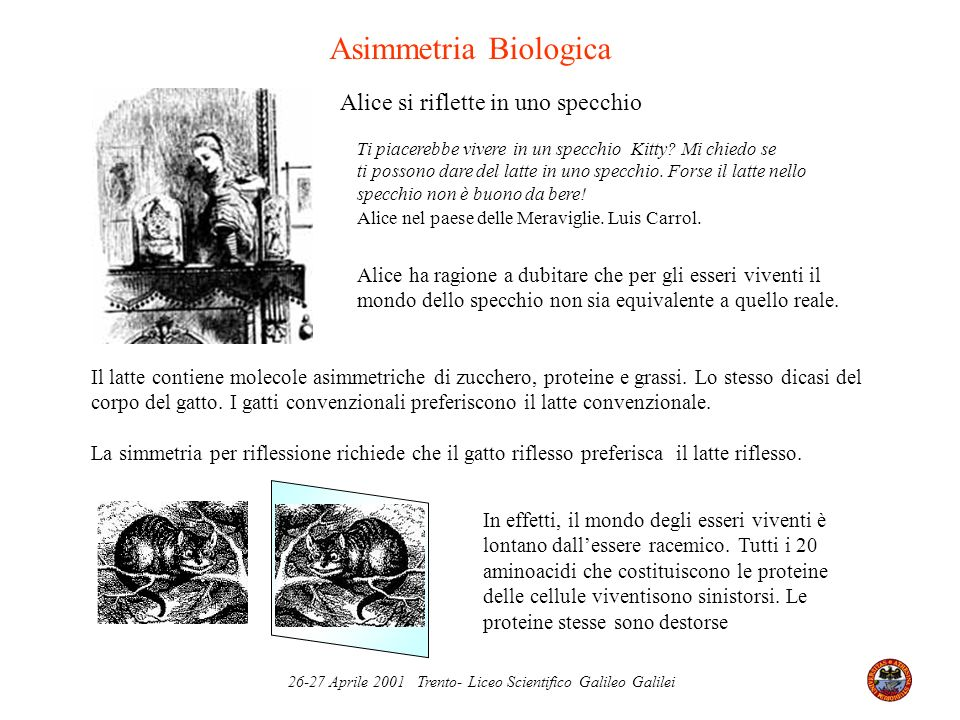 Asimmetria Biologica Alice si riflette in uno specchio