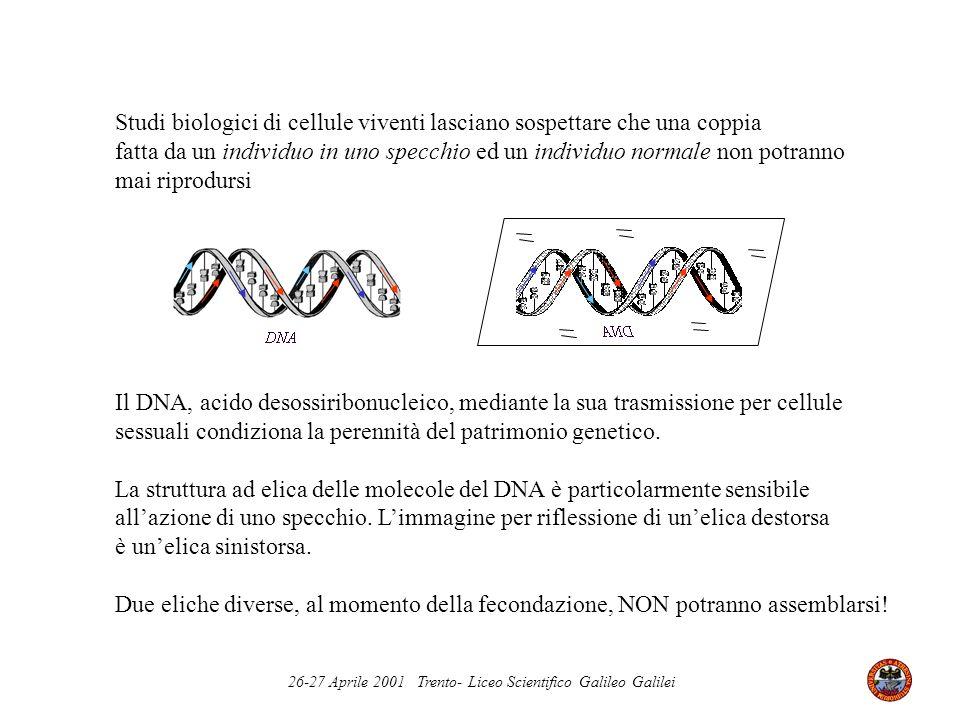 Studi biologici di cellule viventi lasciano sospettare che una coppia