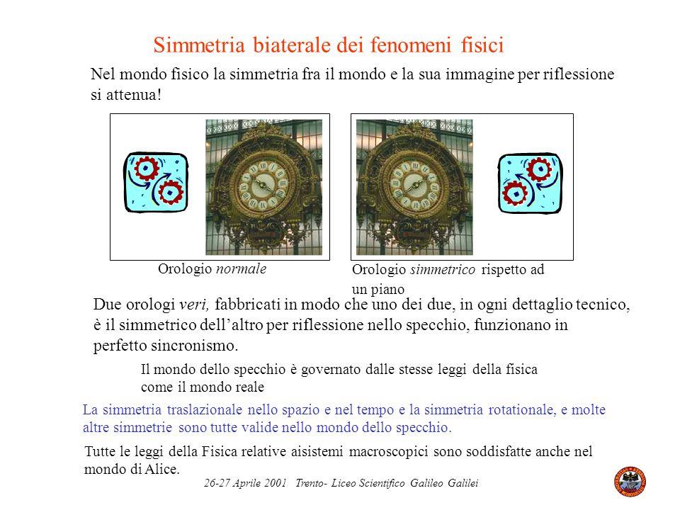 Simmetria biaterale dei fenomeni fisici