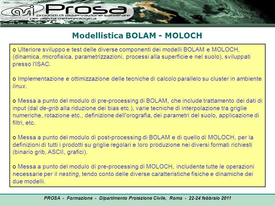 Modellistica BOLAM - MOLOCH