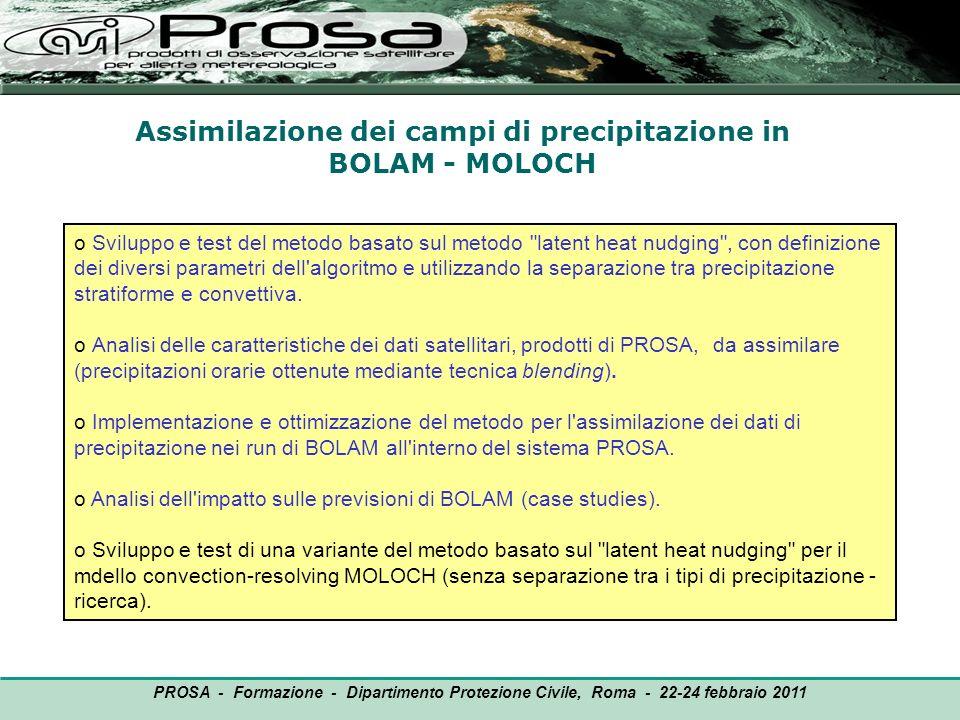 Assimilazione dei campi di precipitazione in