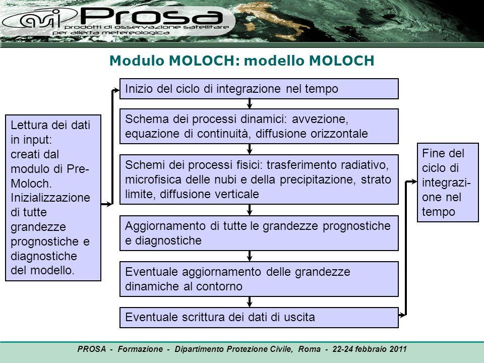 Modulo MOLOCH: modello MOLOCH