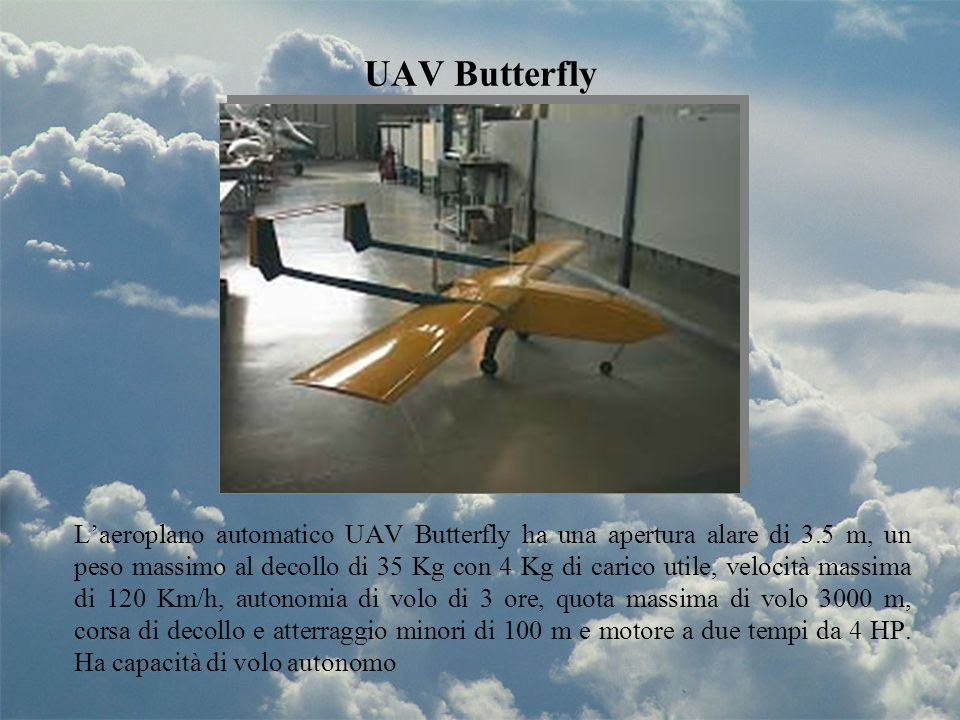 UAV Butterfly