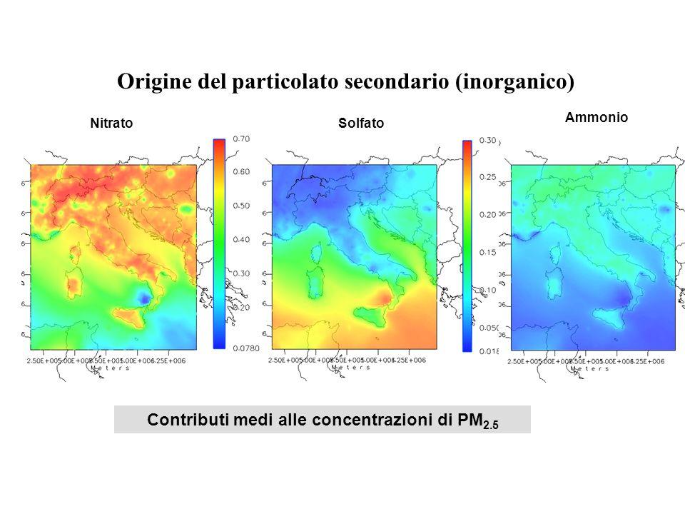 Origine del particolato secondario (inorganico)