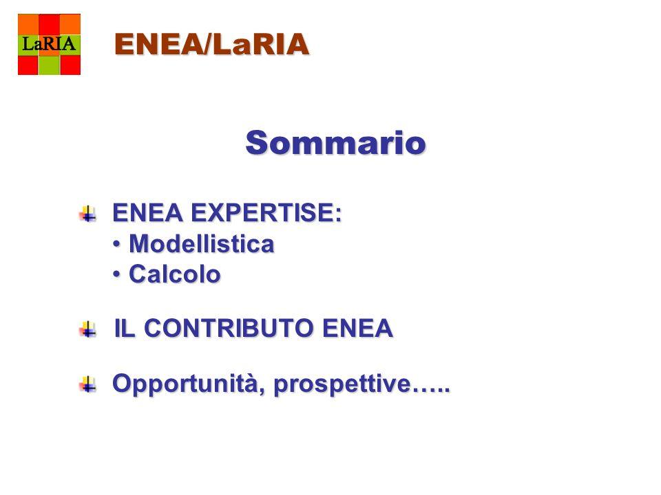Sommario ENEA/LaRIA ENEA EXPERTISE: Modellistica Calcolo