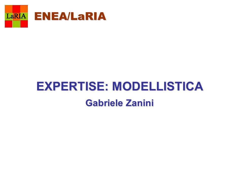 EXPERTISE: MODELLISTICA