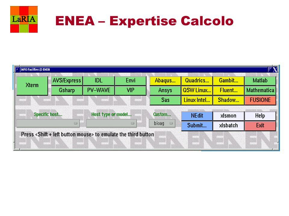 ENEA – Expertise Calcolo