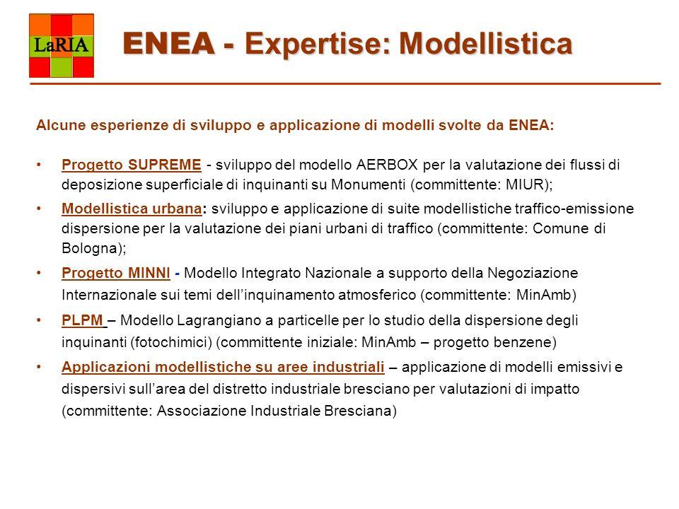 ENEA - Expertise: Modellistica