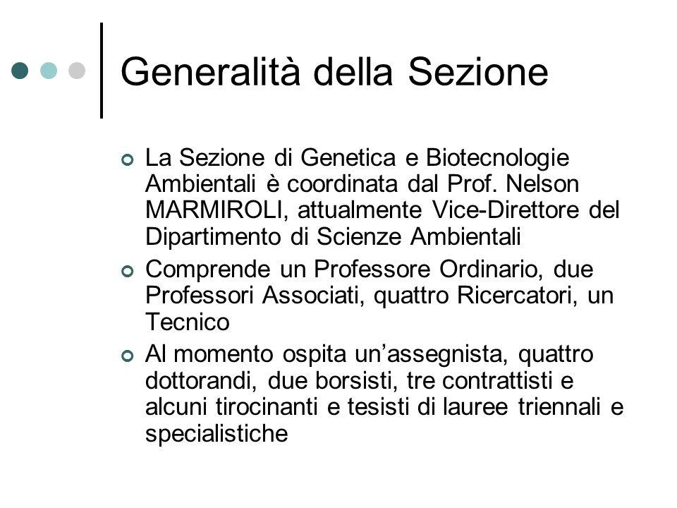 Generalità della Sezione