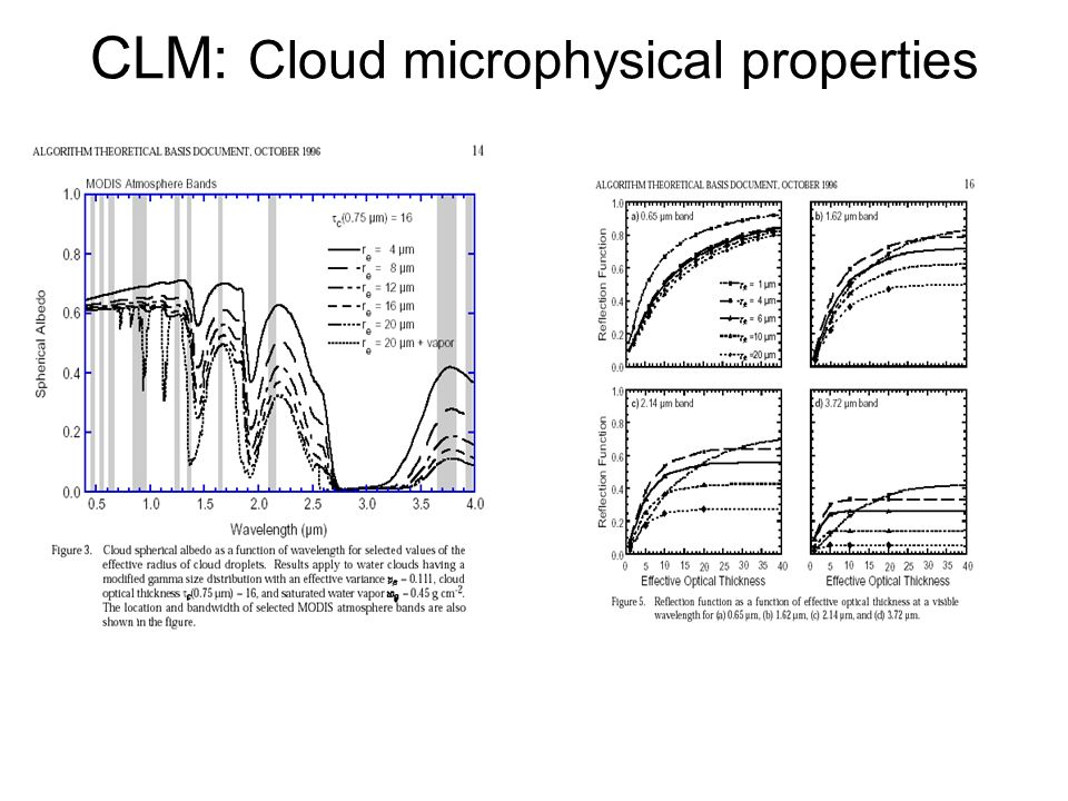 CLM: Cloud microphysical properties