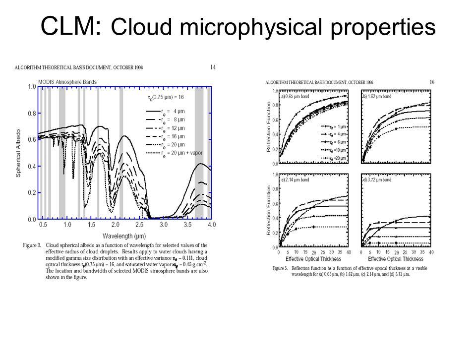 CLM: Cloud microphysical properties