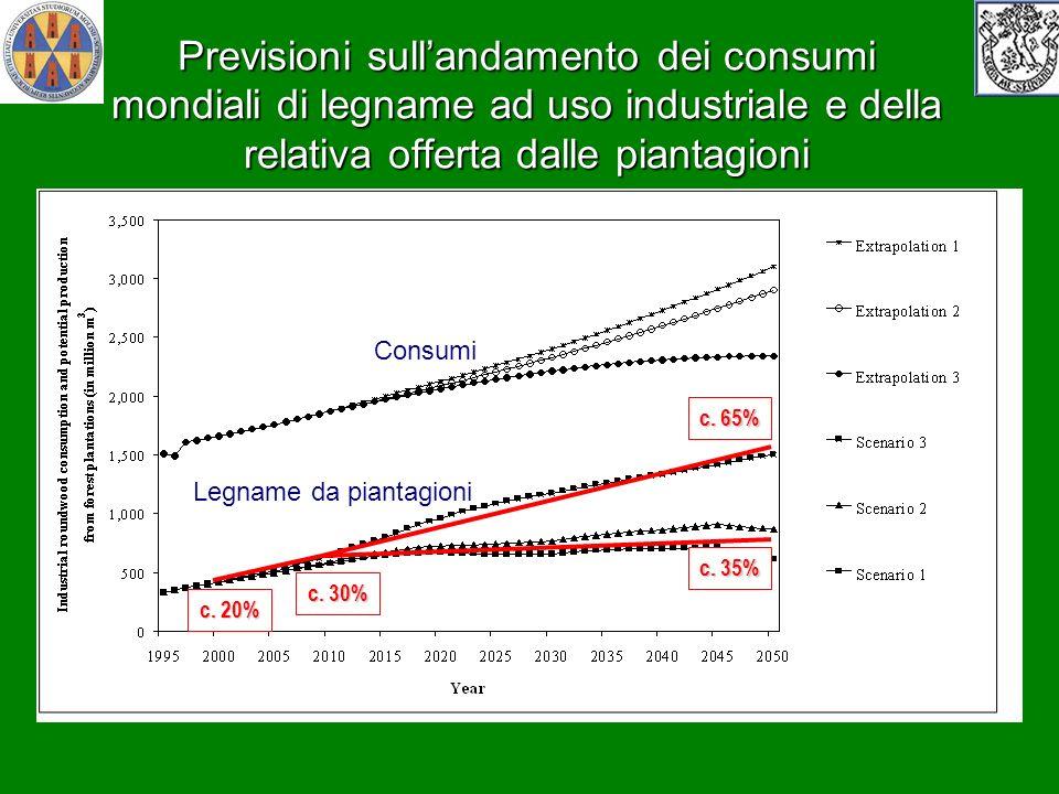 Previsioni sull'andamento dei consumi mondiali di legname ad uso industriale e della relativa offerta dalle piantagioni
