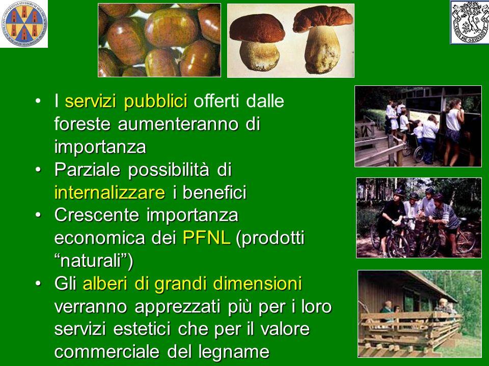 I servizi pubblici offerti dalle foreste aumenteranno di importanza