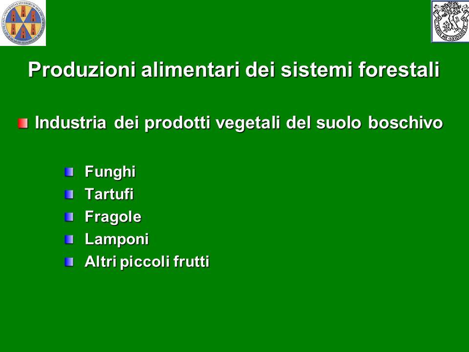 Produzioni alimentari dei sistemi forestali