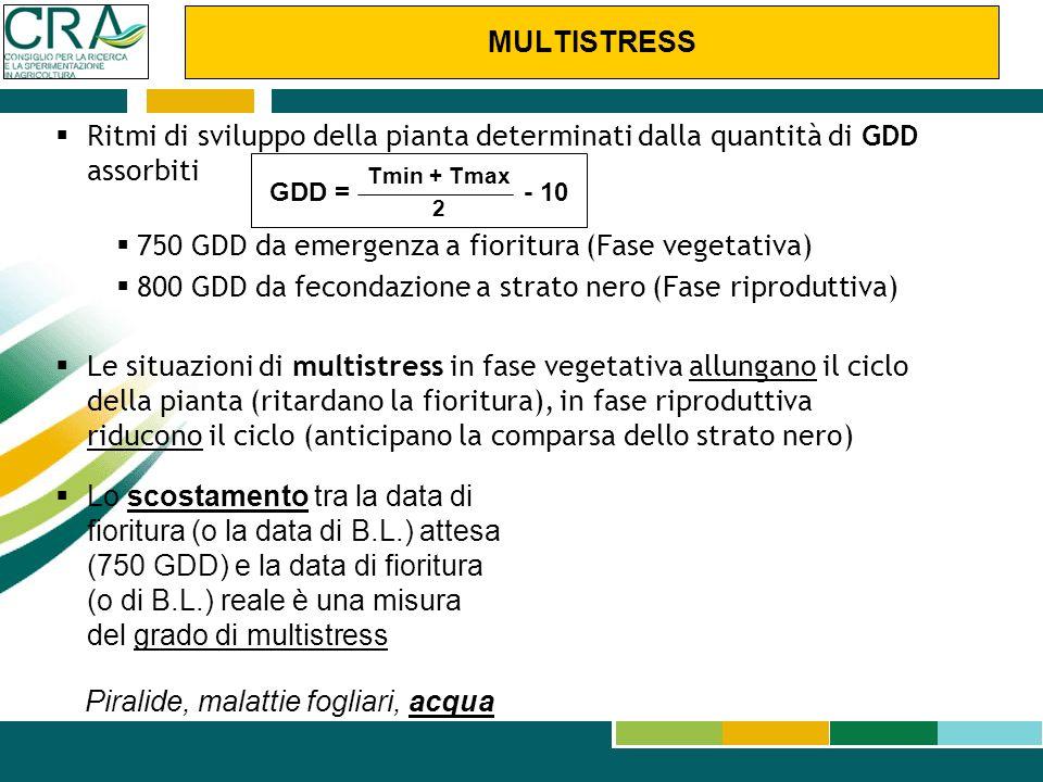 750 GDD da emergenza a fioritura (Fase vegetativa)