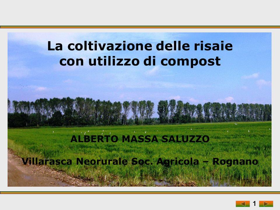 La coltivazione delle risaie con utilizzo di compost