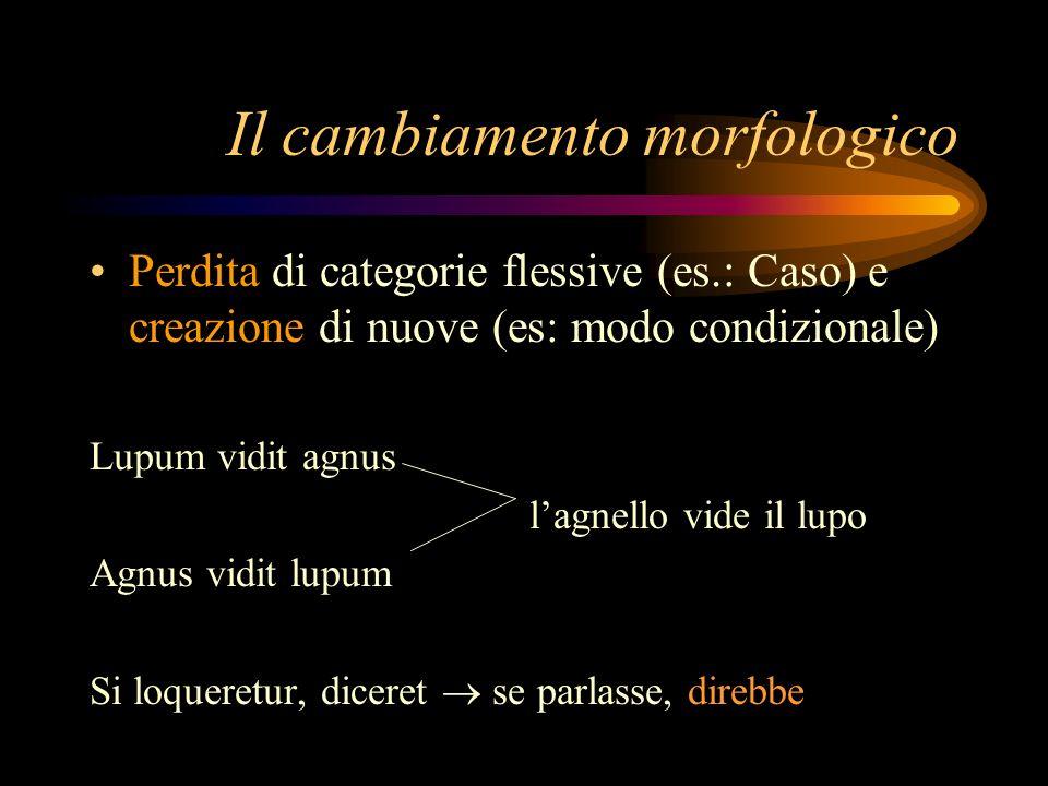 Il cambiamento morfologico