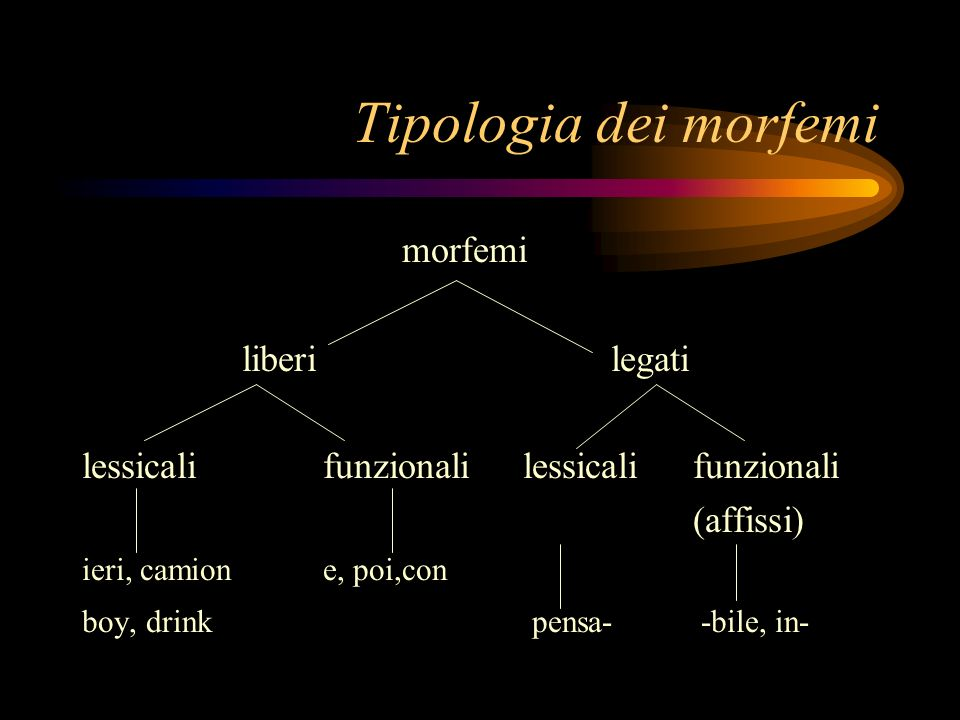 Tipologia dei morfemi morfemi liberi legati