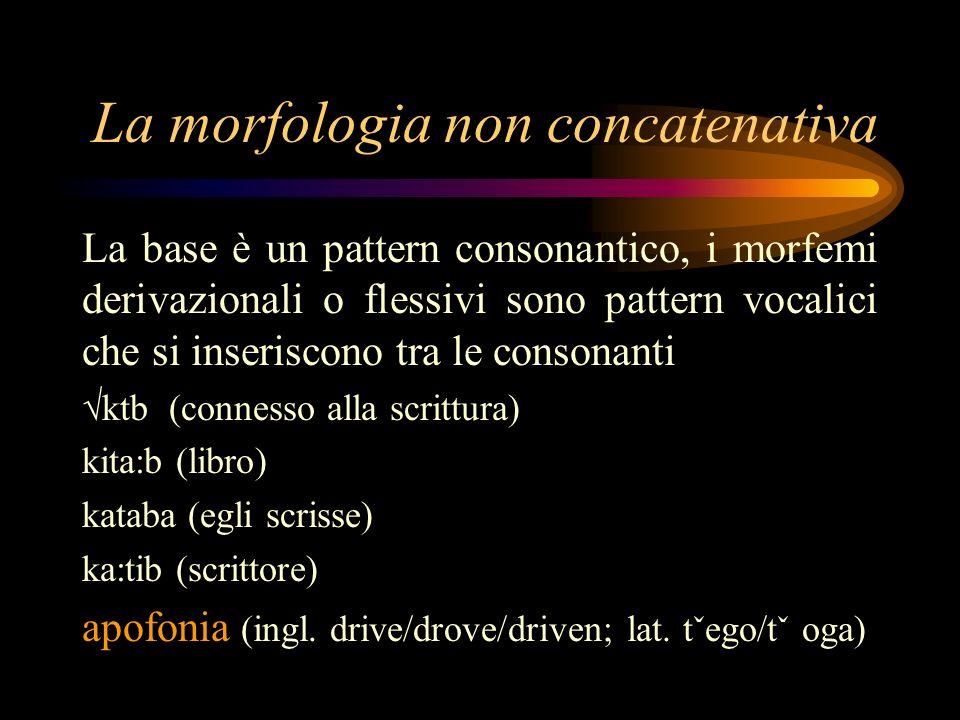 La morfologia non concatenativa