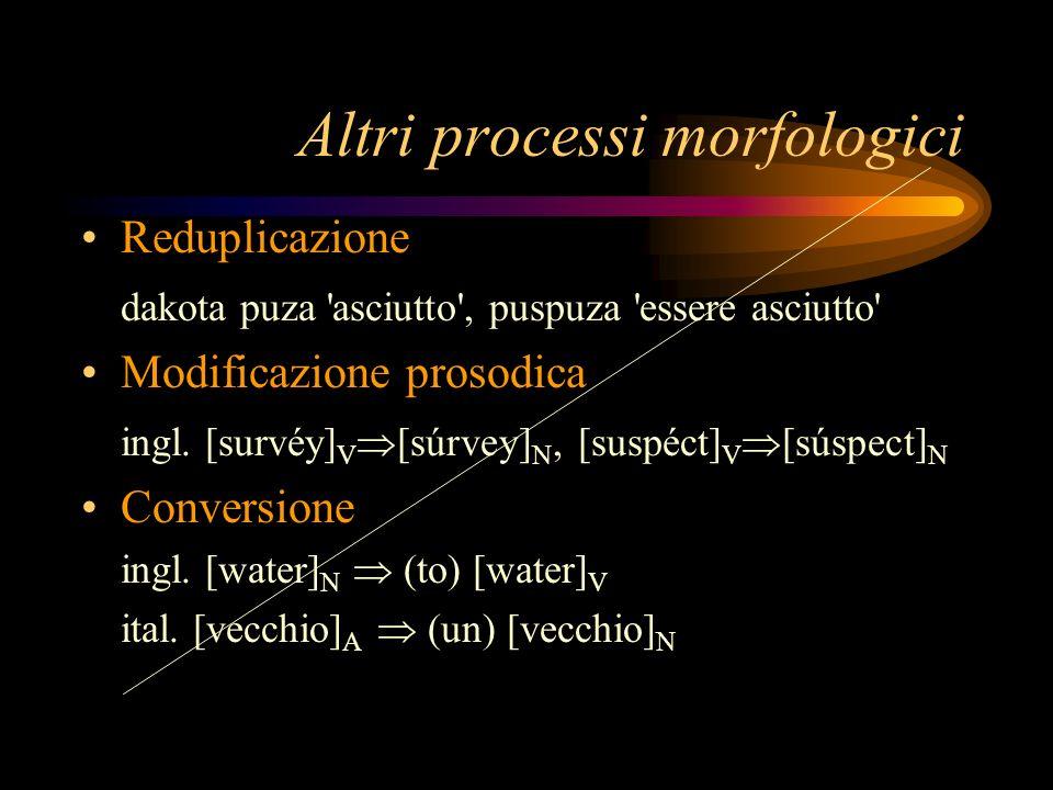 Altri processi morfologici