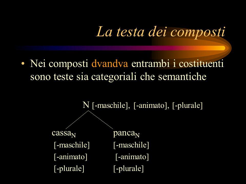 La testa dei composti Nei composti dvandva entrambi i costituenti sono teste sia categoriali che semantiche.