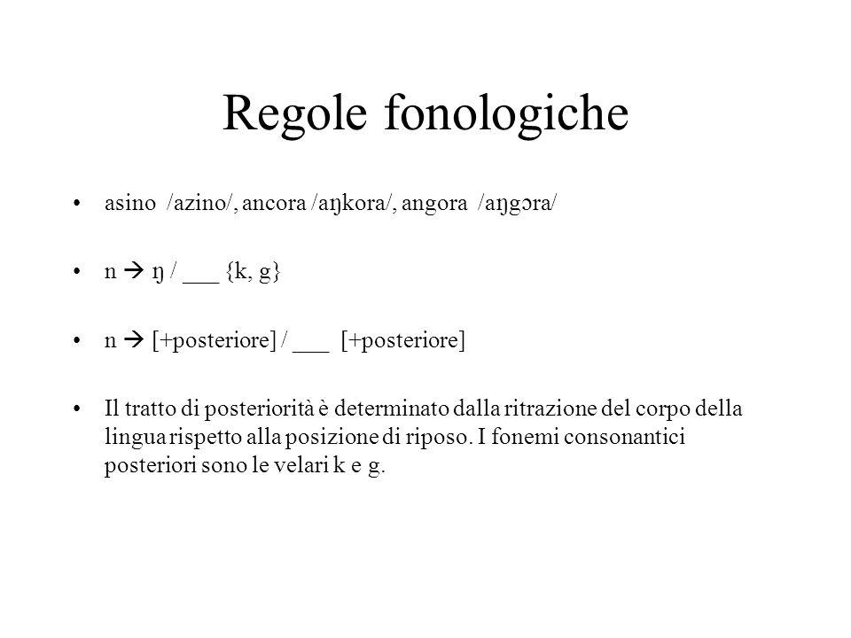 Regole fonologiche asino /azino/, ancora /akora/, angora /agra/