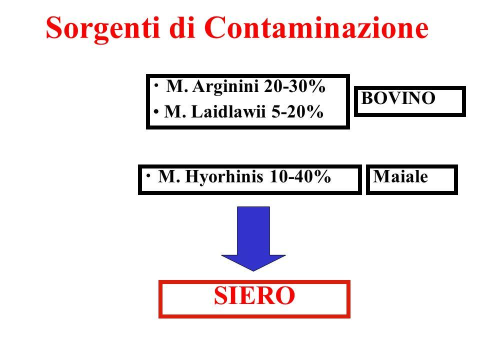 Sorgenti di Contaminazione