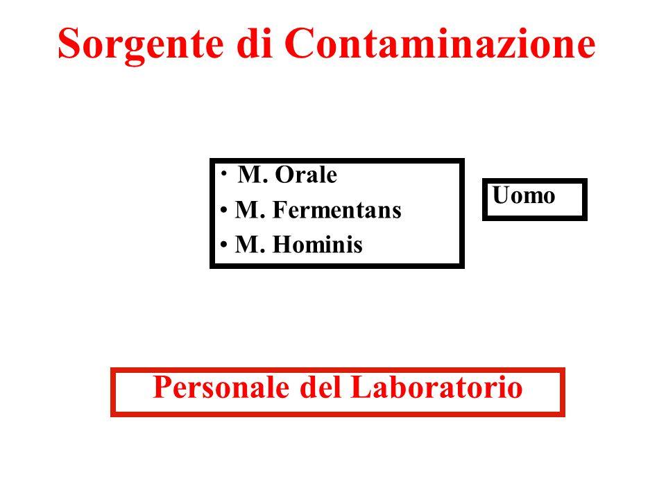 Sorgente di Contaminazione Personale del Laboratorio