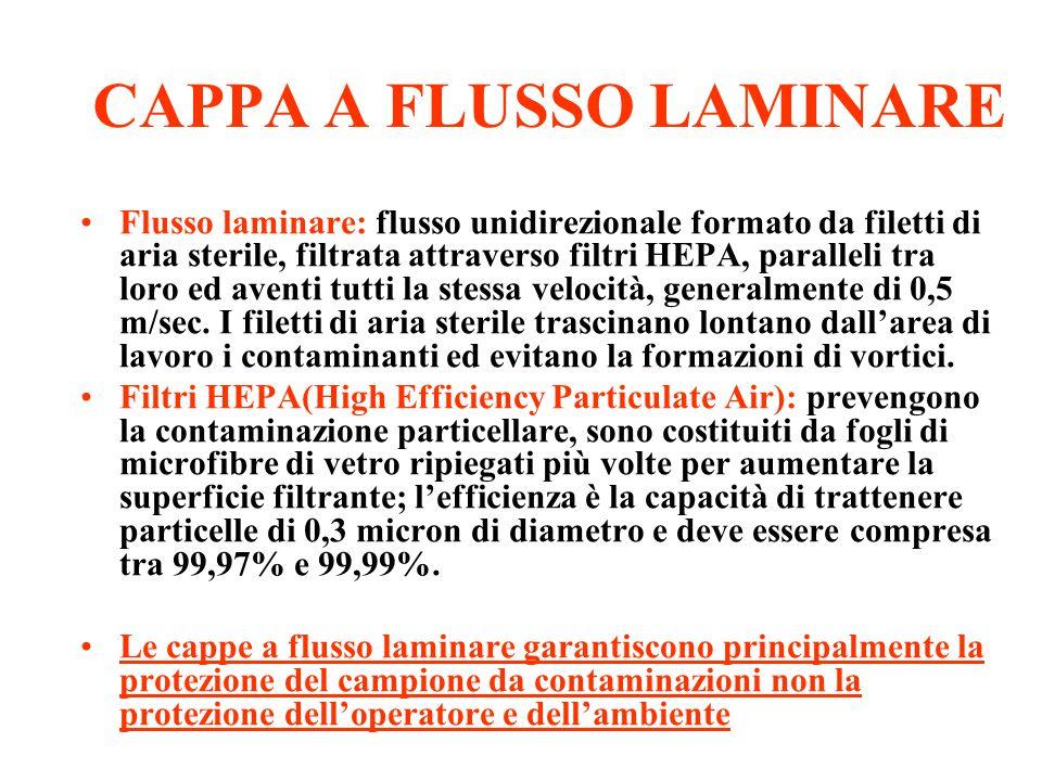 CAPPA A FLUSSO LAMINARE
