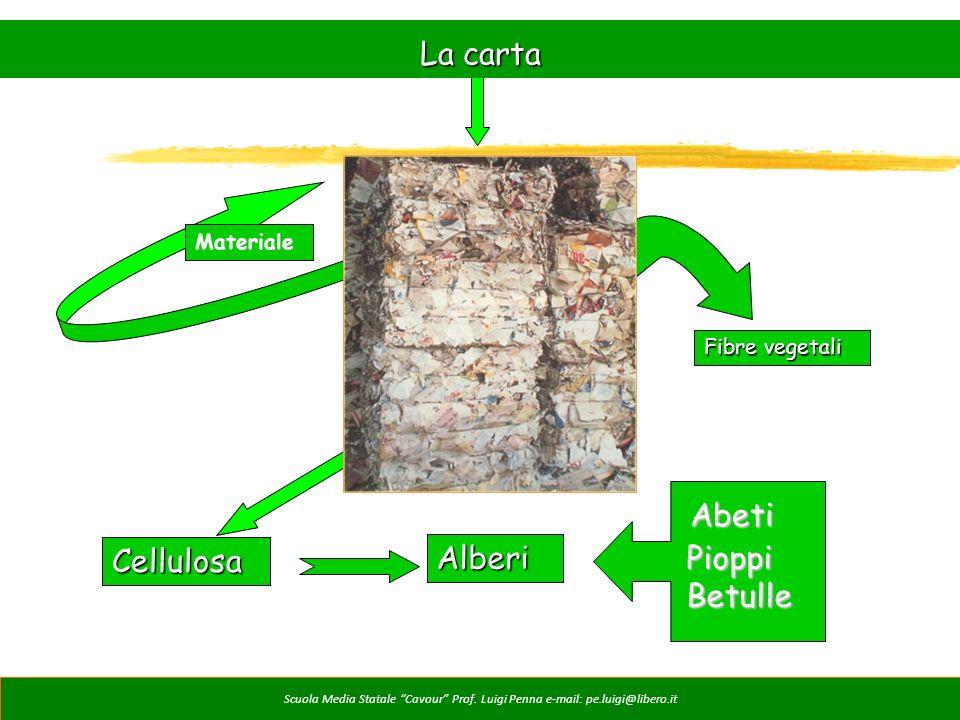 La carta Cellulosa Abeti Alberi Pioppi Betulle Materiale