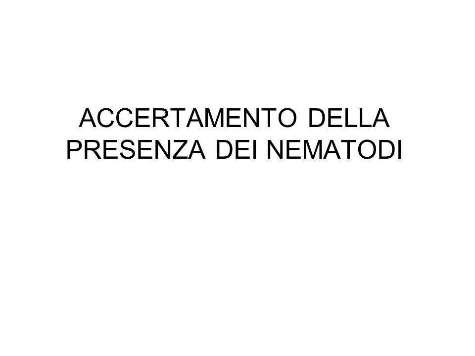 ACCERTAMENTO DELLA PRESENZA DEI NEMATODI