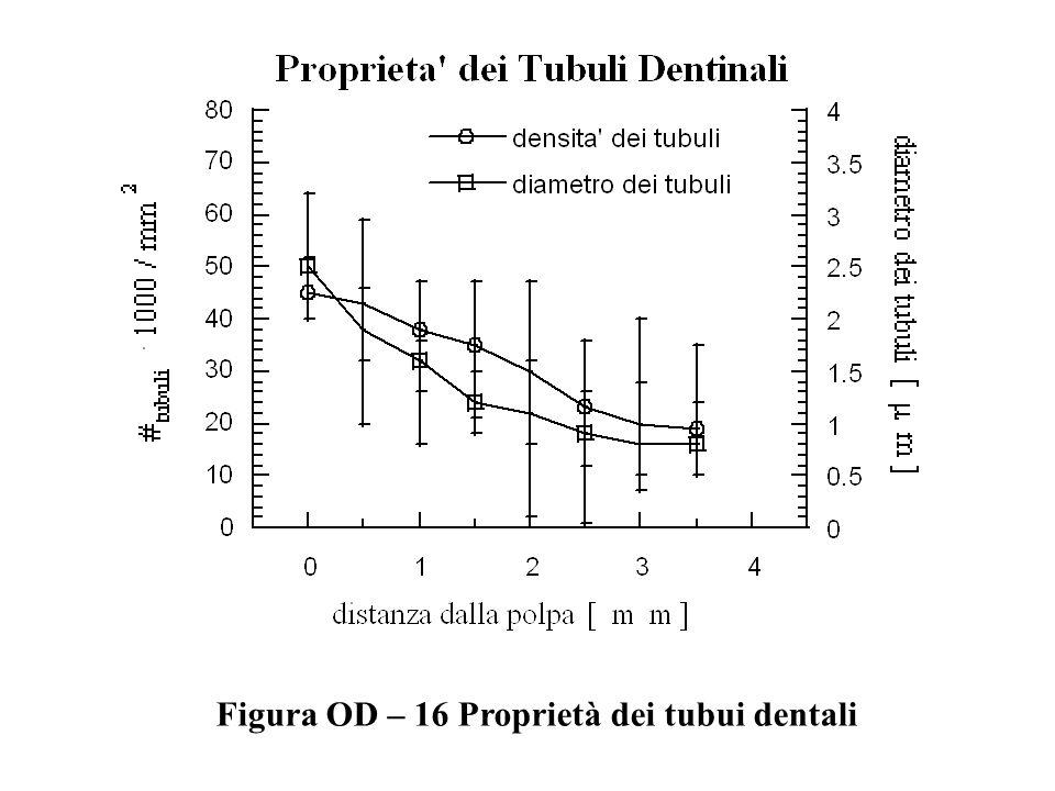 Figura OD – 16 Proprietà dei tubui dentali