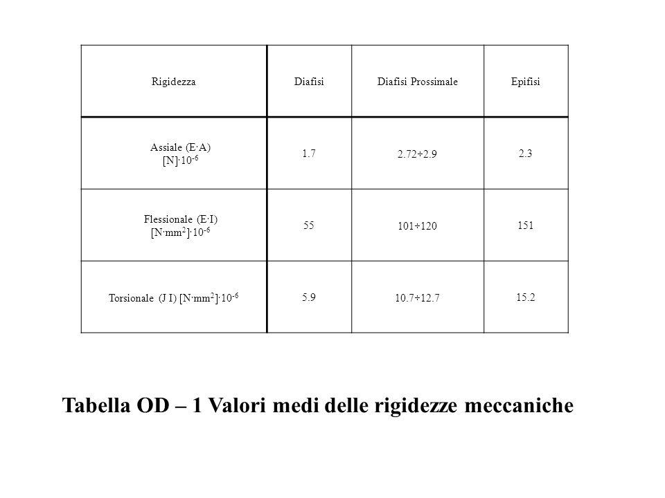 Torsionale (J I) Nmm210-6