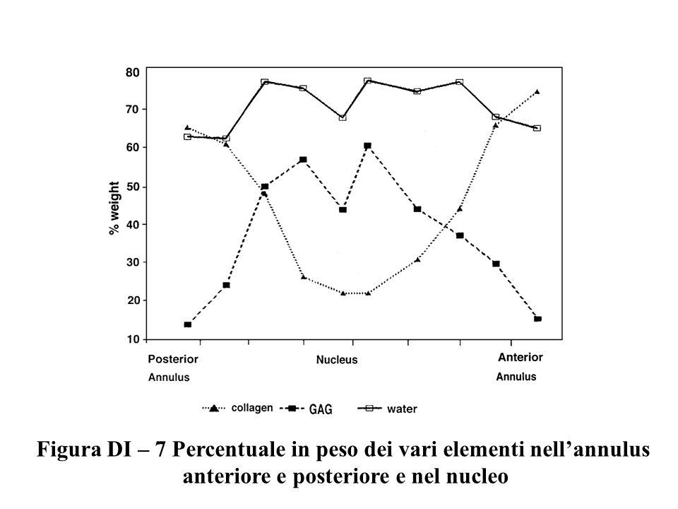 Figura DI – 7 Percentuale in peso dei vari elementi nell'annulus