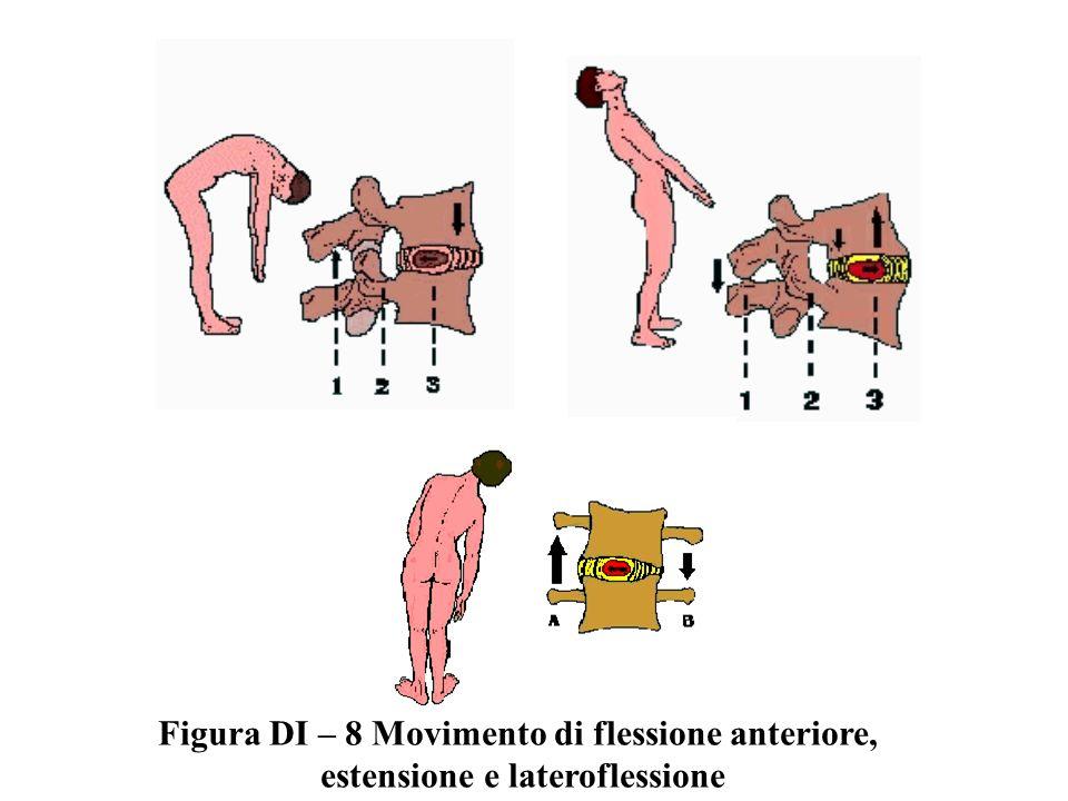 Figura DI – 8 Movimento di flessione anteriore,