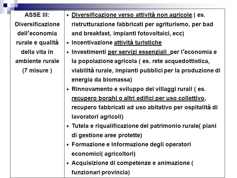 ASSE III: Diversificazione dell'economia rurale e qualità della vita in ambiente rurale. (7 misure )