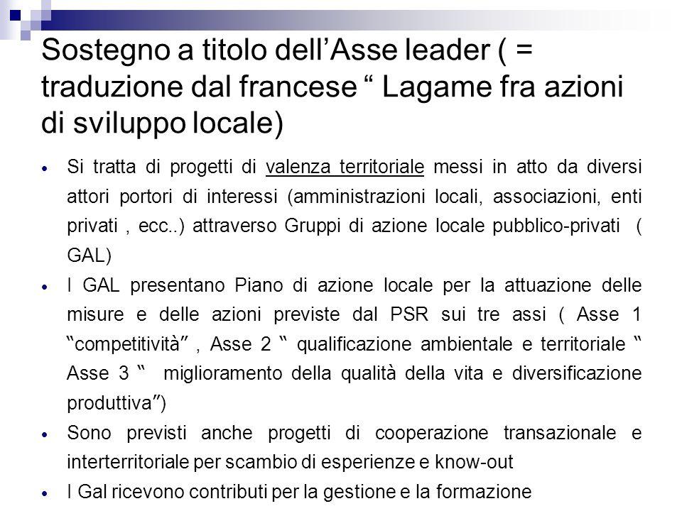 Sostegno a titolo dell'Asse leader ( = traduzione dal francese Lagame fra azioni di sviluppo locale)