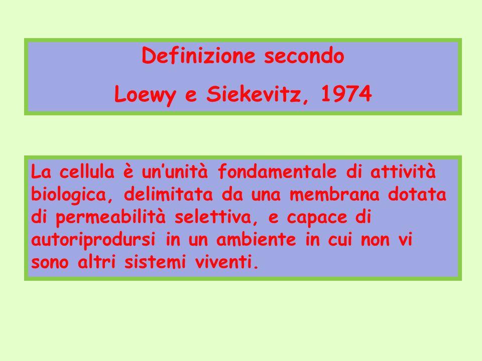 Definizione secondo Loewy e Siekevitz, 1974