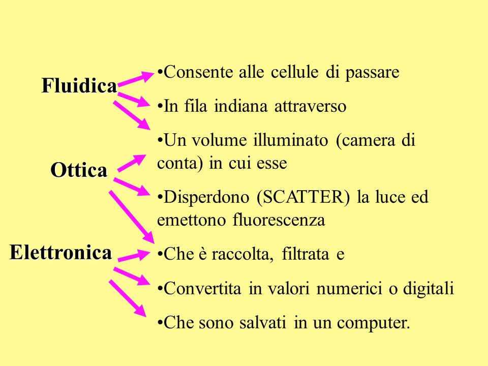 Fluidica Ottica Elettronica Consente alle cellule di passare