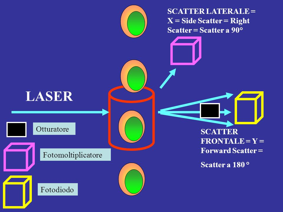 SCATTER LATERALE = X = Side Scatter = Right Scatter = Scatter a 90°
