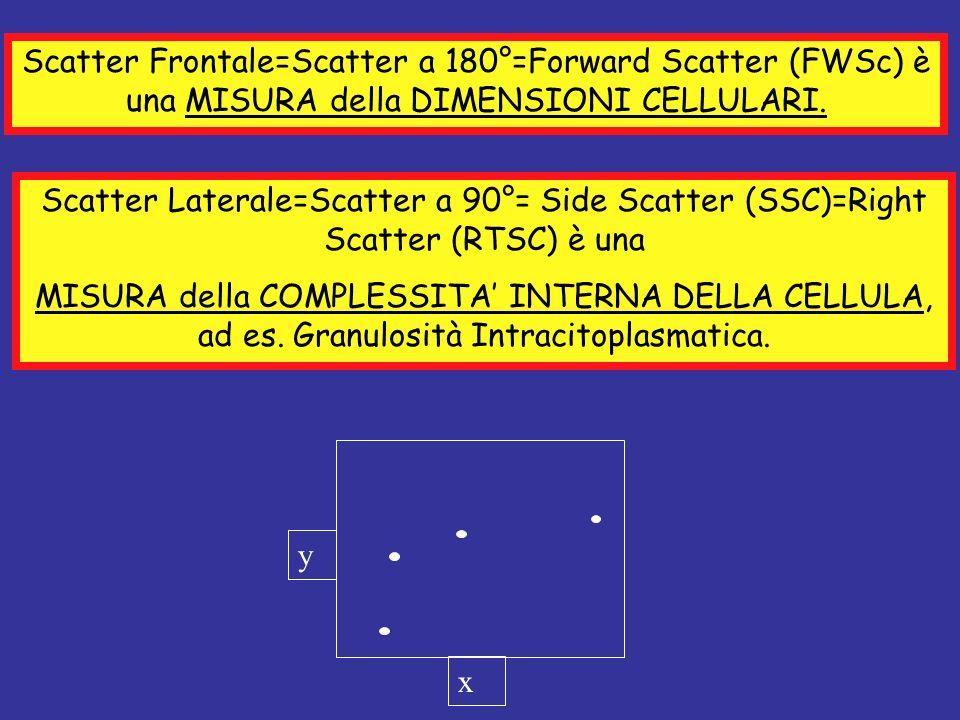 Scatter Frontale=Scatter a 180°=Forward Scatter (FWSc) è una MISURA della DIMENSIONI CELLULARI.