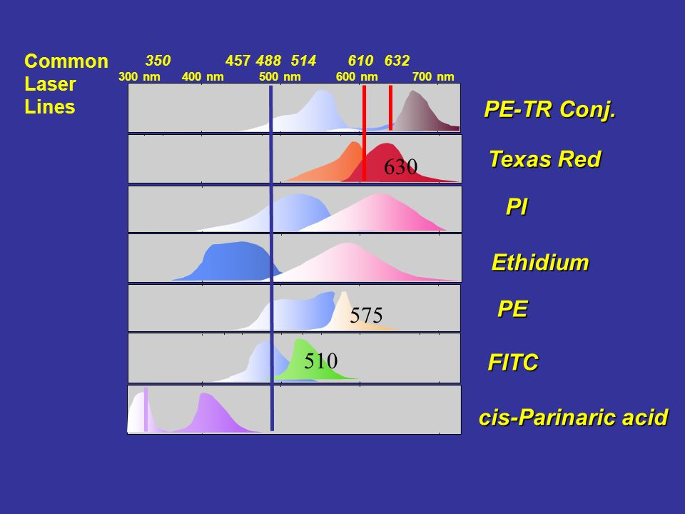 PE-TR Conj. Texas Red 630 PI Ethidium PE 575 510 FITC