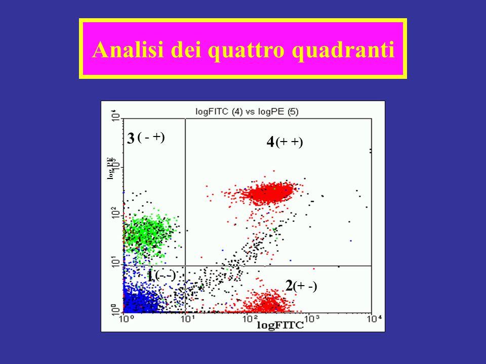 Analisi dei quattro quadranti