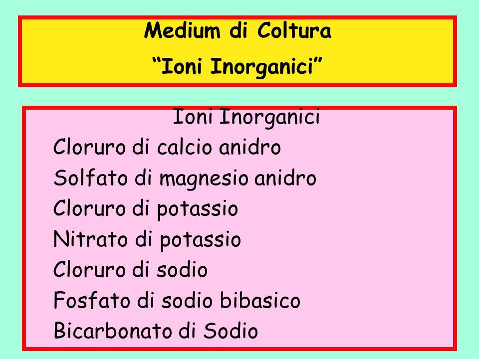 Medium di Coltura Ioni Inorganici Ioni Inorganici. Cloruro di calcio anidro. Solfato di magnesio anidro.
