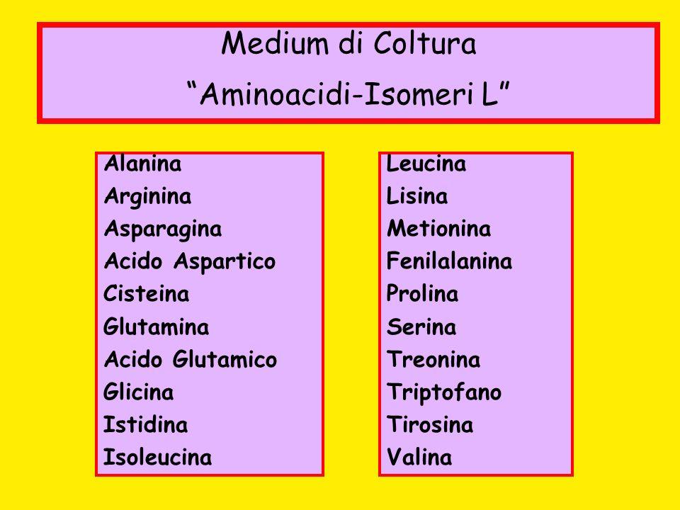 Aminoacidi-Isomeri L