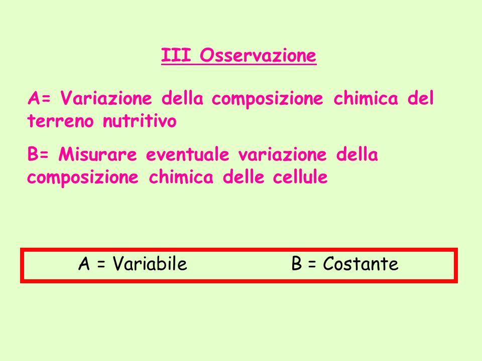 III Osservazione A= Variazione della composizione chimica del terreno nutritivo.