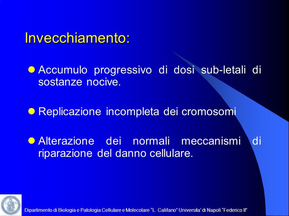 Invecchiamento: Accumulo progressivo di dosi sub-letali di sostanze nocive. Replicazione incompleta dei cromosomi.