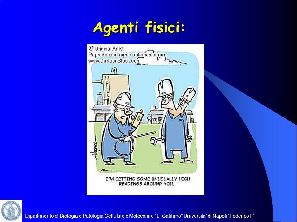 Agenti fisici: Dipartimento di Biologia e Patologia Cellulare e Molecolare L.
